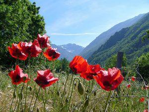 sexe hautes pyrenees