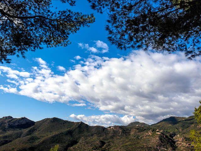 Desierto de las Palmas is a verdant oasis