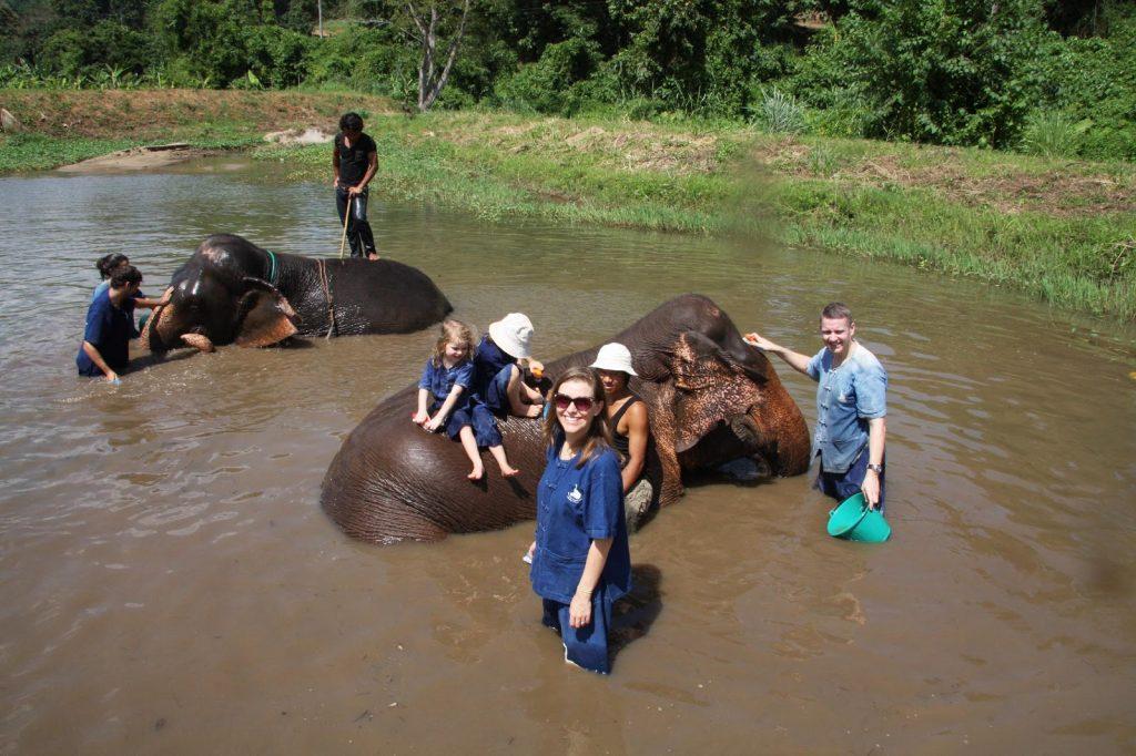 Bathing elephants in Chaing Mai, Thailand