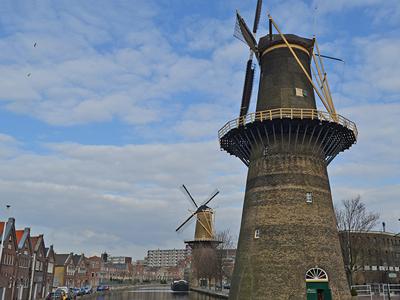 two Schiedam windmills