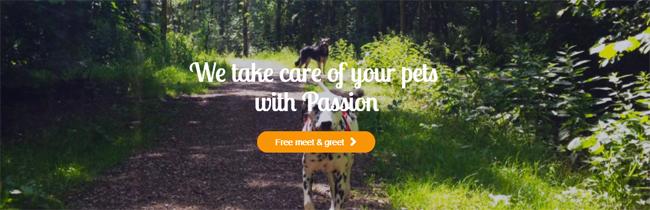 professional dog walking service in The Hague - Rijswijk area Netherlands