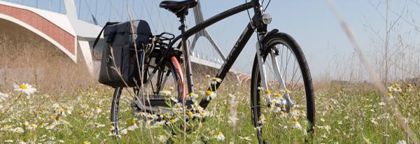 electric bikes for sale in The Hague Delft Rijswijk